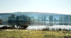 La lutte contre la déforestation : l'exemple norvégien